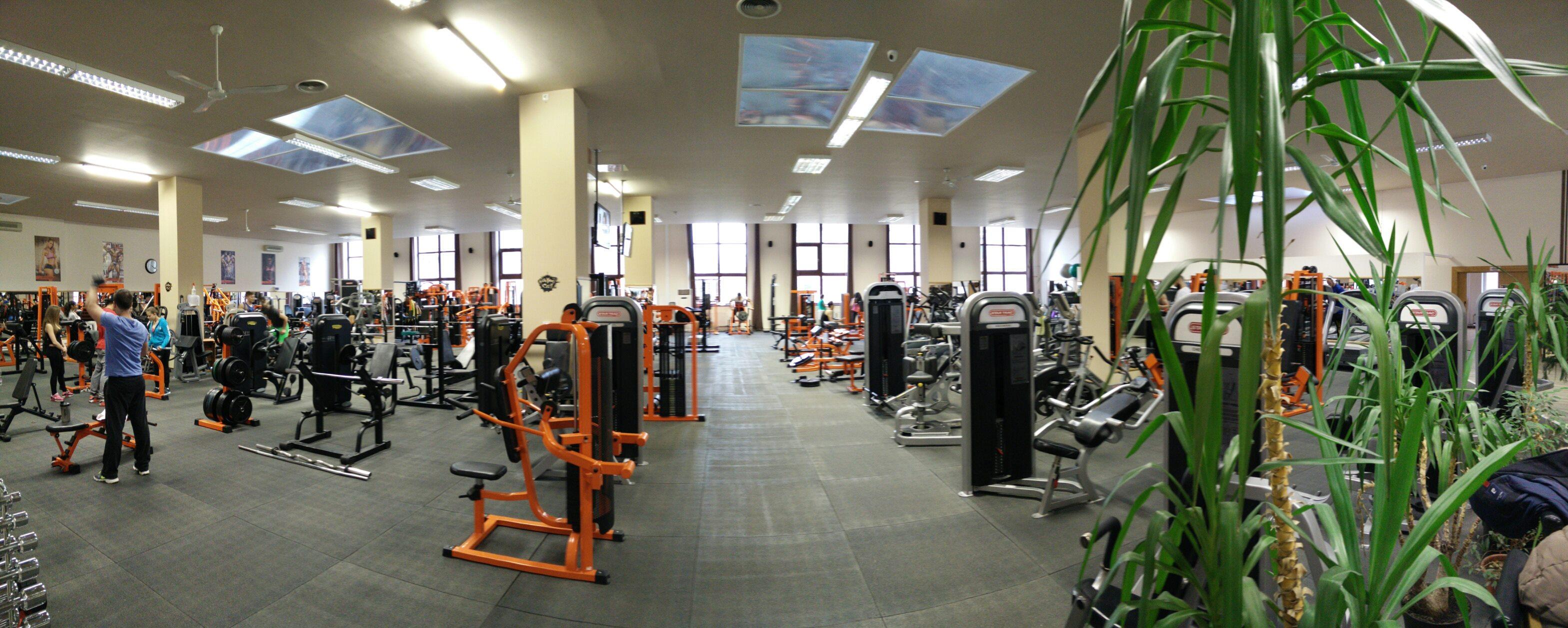 Gym City Budapest