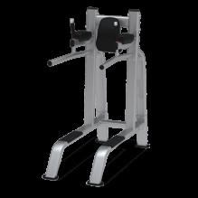 LEG RAISE/DIP – Lábfelhúzó/tolódzkodó állvány - Nautilus Freedom Rack